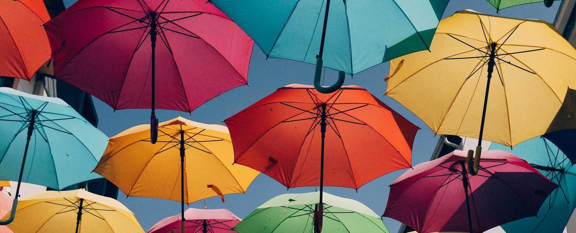 انواع چتر